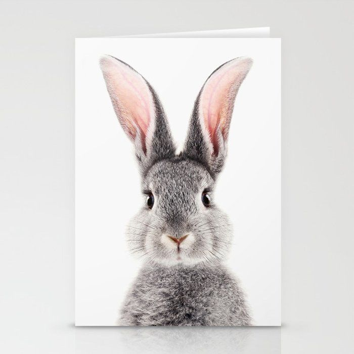 Baby Bunny Greeting Card by Lotus Print Studio - S