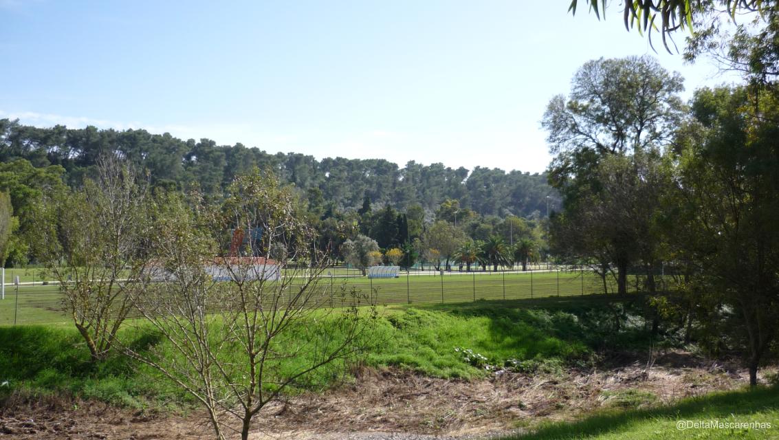 Imediações do Parque Urbano do Centro Desportivo Nacional do Jamor. Vistas sobre os campos de grandes jogos destinados à prática de Futebol, Râguebi e Hóquei em Campo.