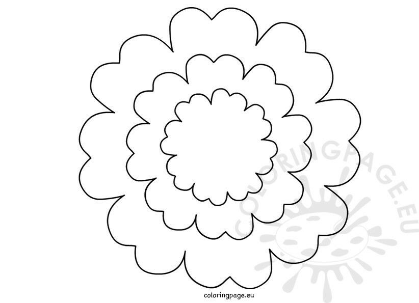 Pin by Cathy Cathy on paer flower Pinterest Flower - flower petal template