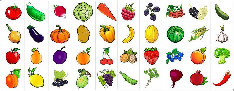 Овощи и фрукты. 3 сортировки | Материалы монтессори, Овощи ...