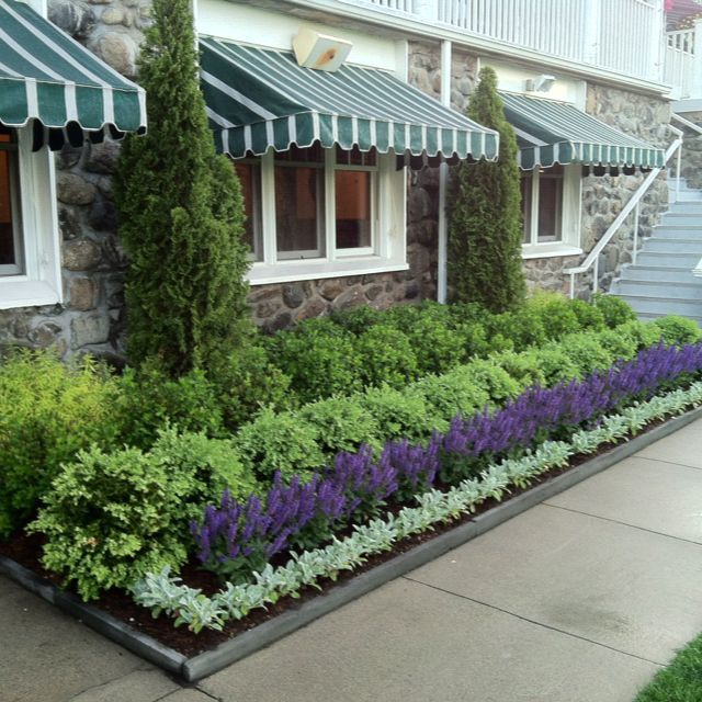 Garden Ideas Landscape Plans For Front Of House: Clethra, Boxwood, Sage, Lambs Ear