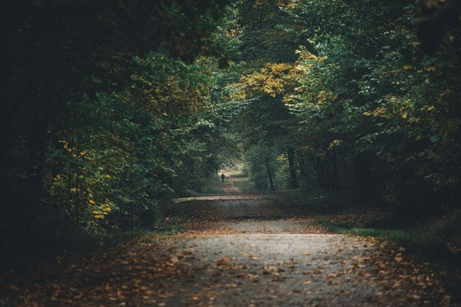 Check out your local surroundings! by Johannes Hulsch #xemtvhay