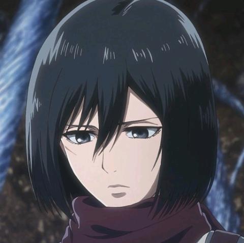 Attack on titan / shingeki no kyojin    from top: Mikasa Ackerman 7w7   Attack on titan aesthetic, Mikasa ...
