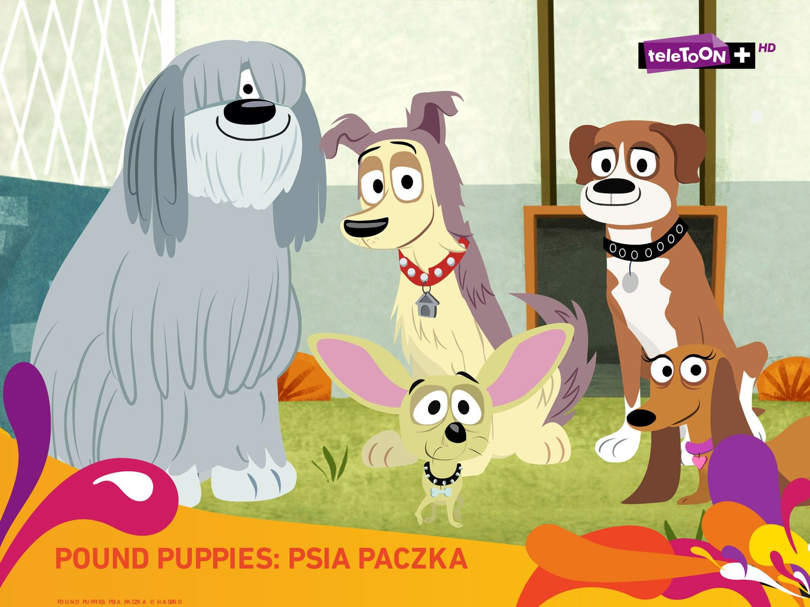 wallpaper fond d écran Pound Puppies les Pitous