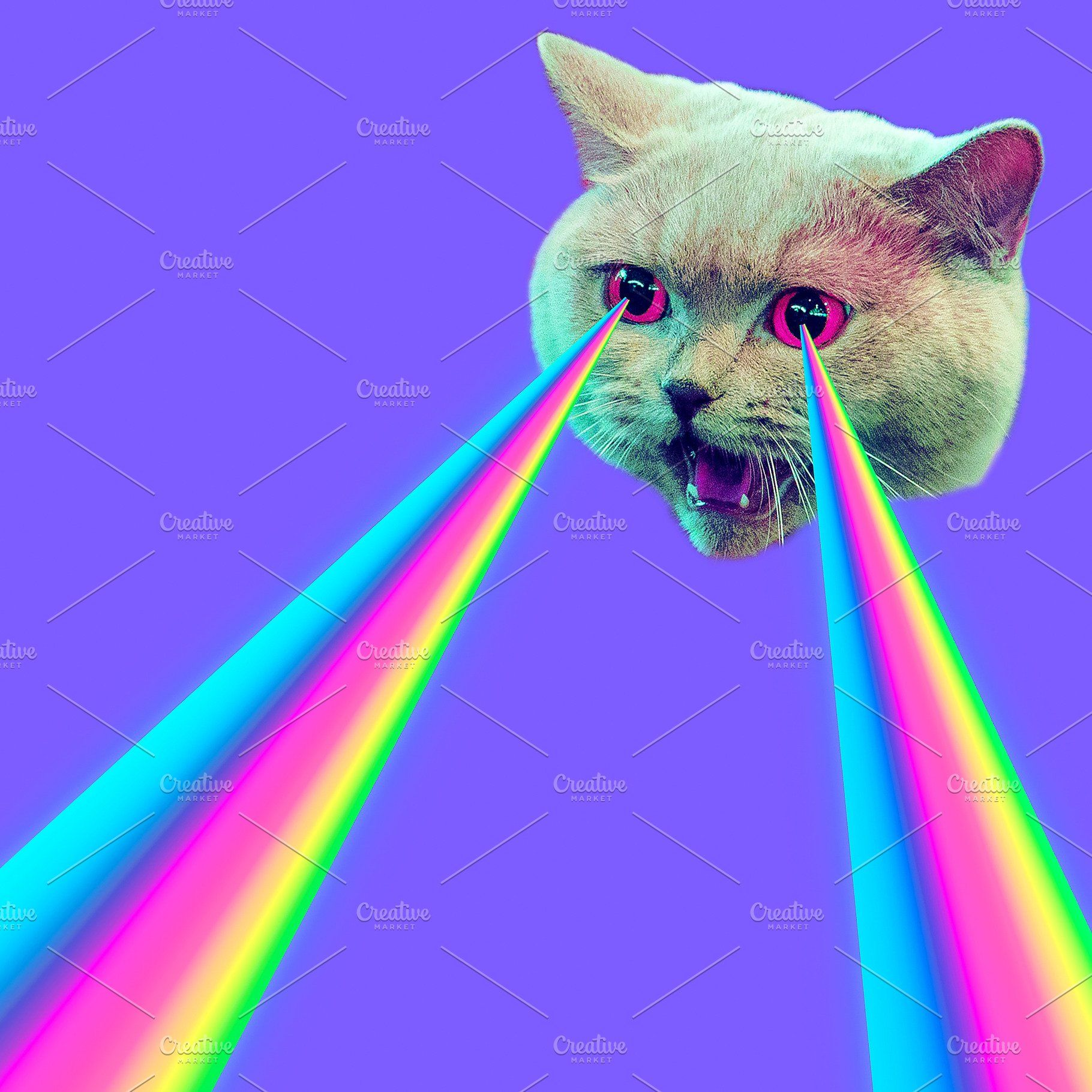 Evil Cat with rainbow lasers from ey Злые кошки