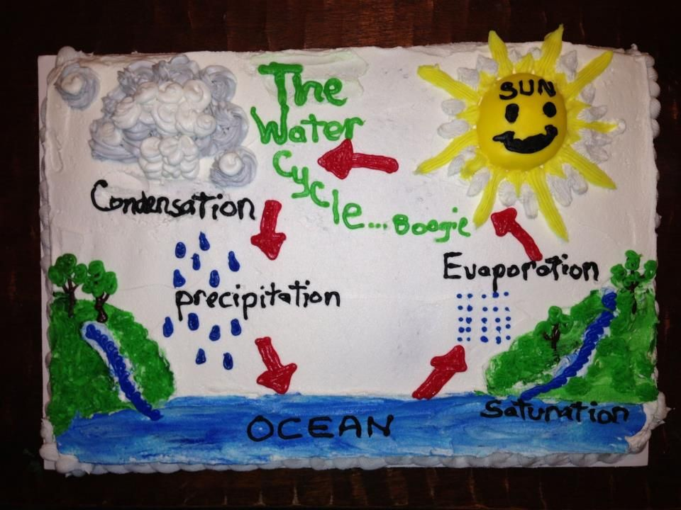Jake's Water Cycle Project Kake | Kelly's Kakes:) | Pinterest ...