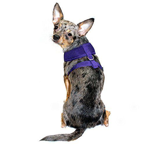 Hip Doggie Ultra Comfort Purple Mesh Harness Vest XXLarge >>> Read