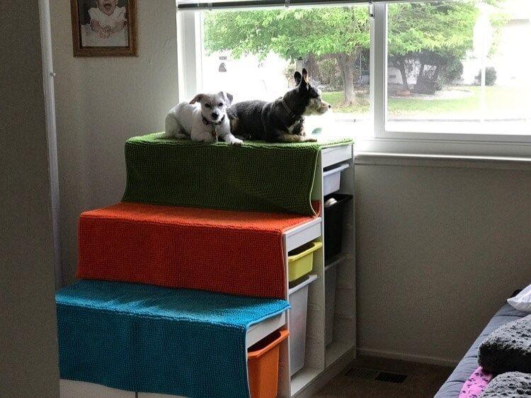 Diy Dog Window Perch With Steps Dog Window Ikea Dog Dog Steps