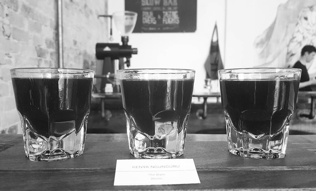 Black Coffee Drinkers Only (@theblackcoffeeco) • Instagram photos and videos