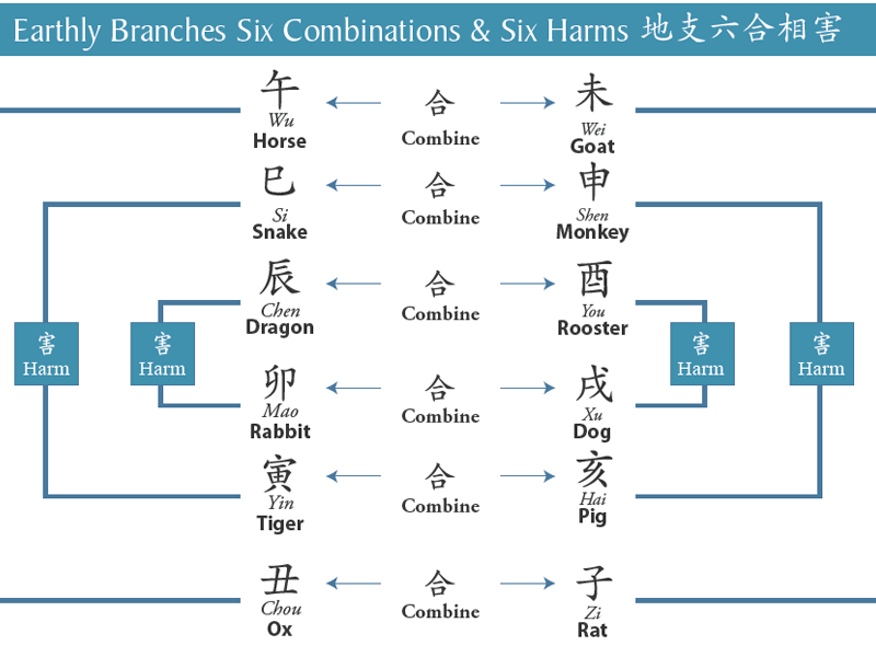 The Bazi Reference Chart - Branches Relationships