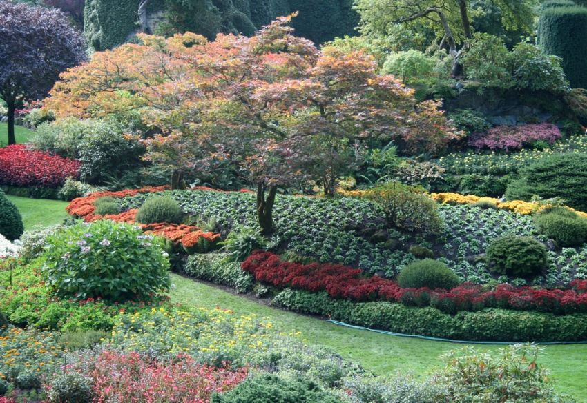 Sunken Gardens Fl 1825 4th Street North St Petersburg 33704