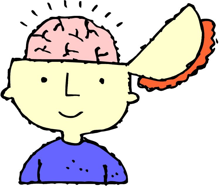child brains