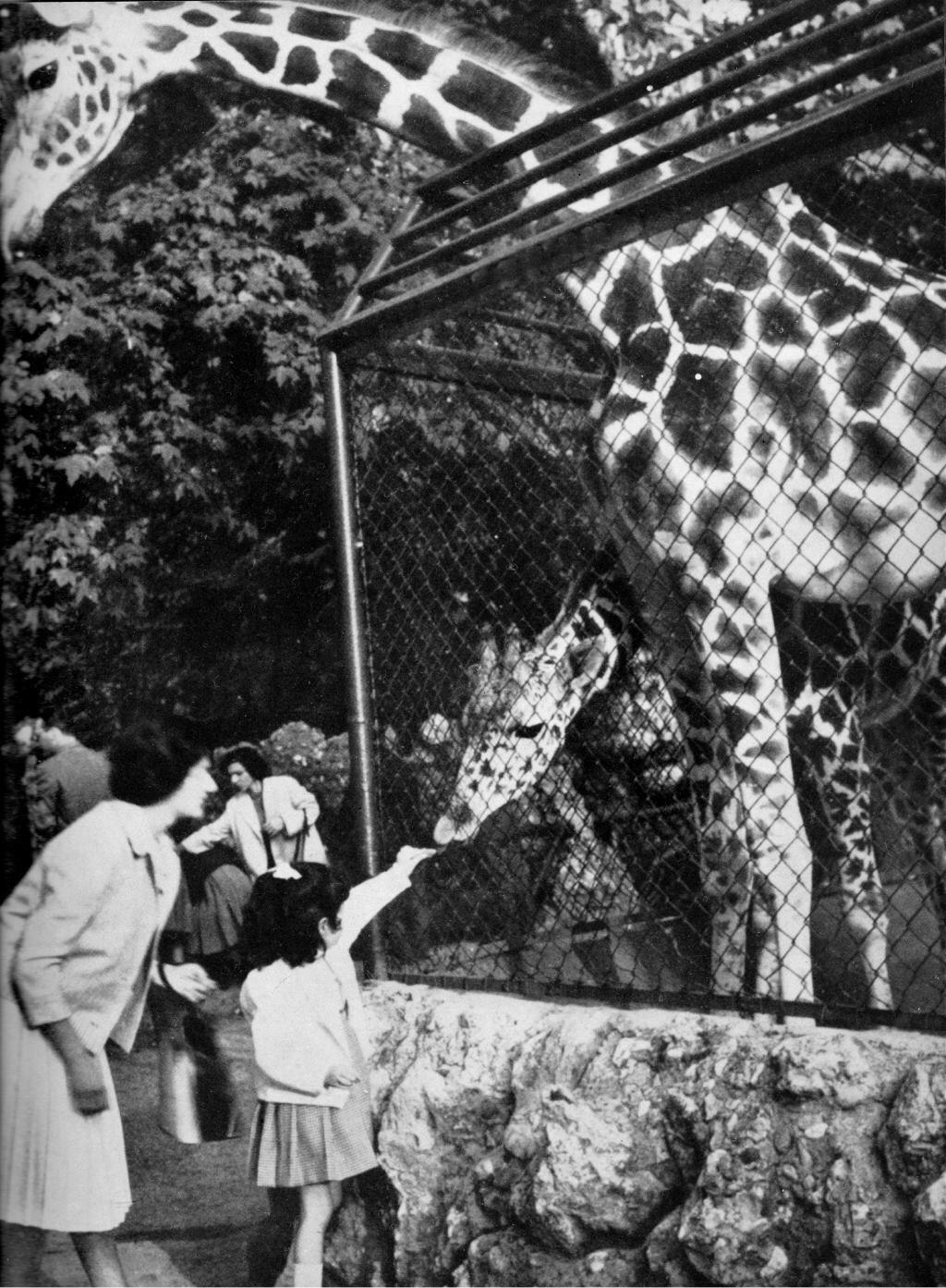 Lo Zoo a Porta Venezia... Milano, Vecchie fotografie
