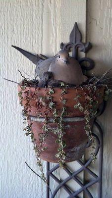 ♪ Un nido muy cómodo