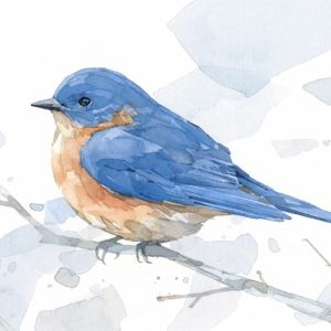 bluebird painting watercolor print