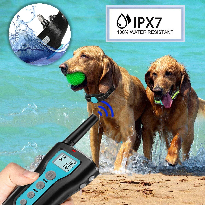 Ipetdog Dog Training Collar With Remote 1000ft Control Range