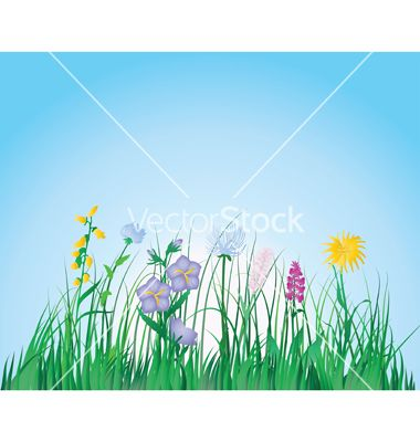 Free+Vector+|+Grass+vector+67039+-+by+angelp on VectorStock®