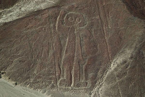Lineas Nazca Hombre Lechuza Ica Peru