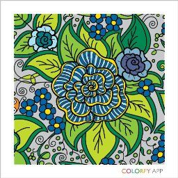 Amazon Customer Reviews Colorfy Coloring Book For Adults
