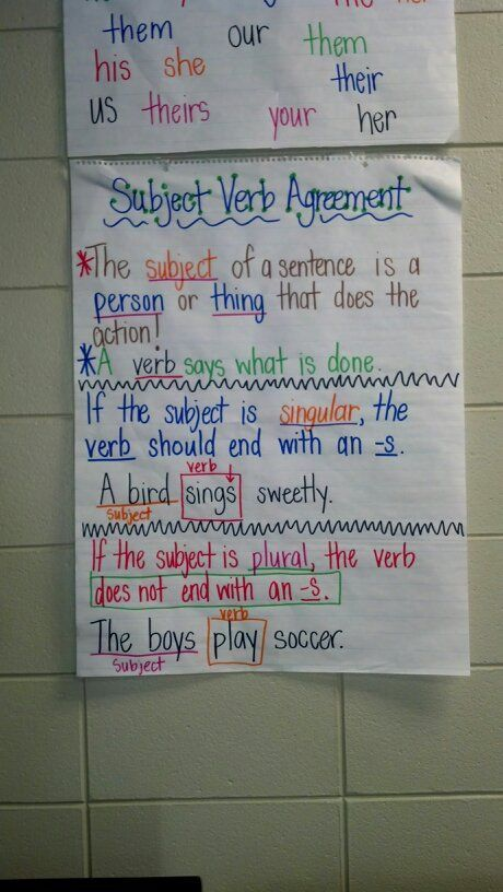 3rd Grade Subject Verb Agreement Grammar Teaching