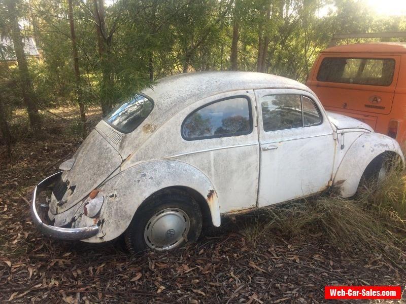 VW 1958 beetle RARE #vwvolkswagen #beetle #forsale #australia ...