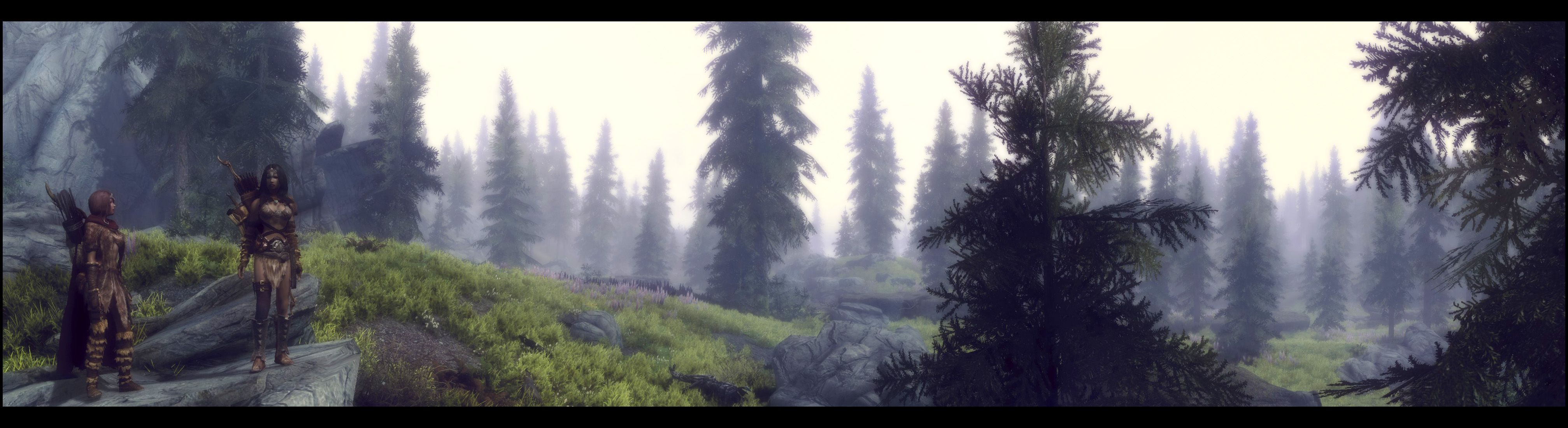 Skyrim Panorama shot.  Uses a custom ENB mod based off of the Winds of the Nords ENB.  Also other mods for better vegetation etc.