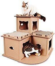Photo of 10 impresionantes casas de cartón para gatos