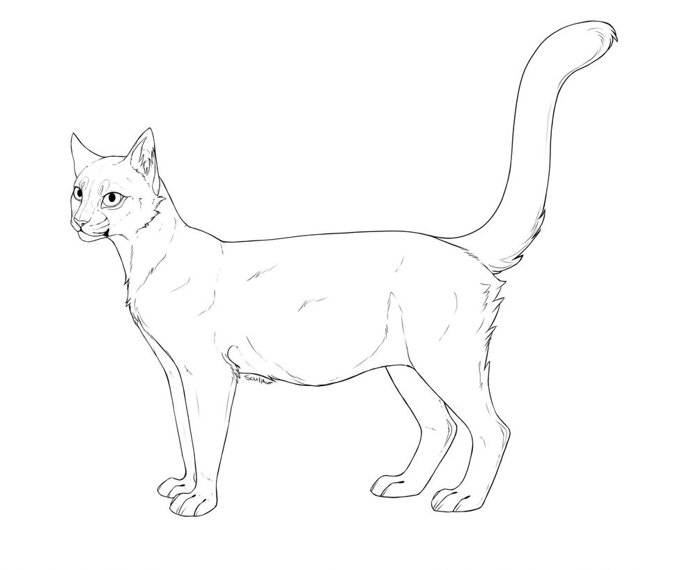 29 Warrior cats-Ideen  katzen, katze zeichnen, warrior cats