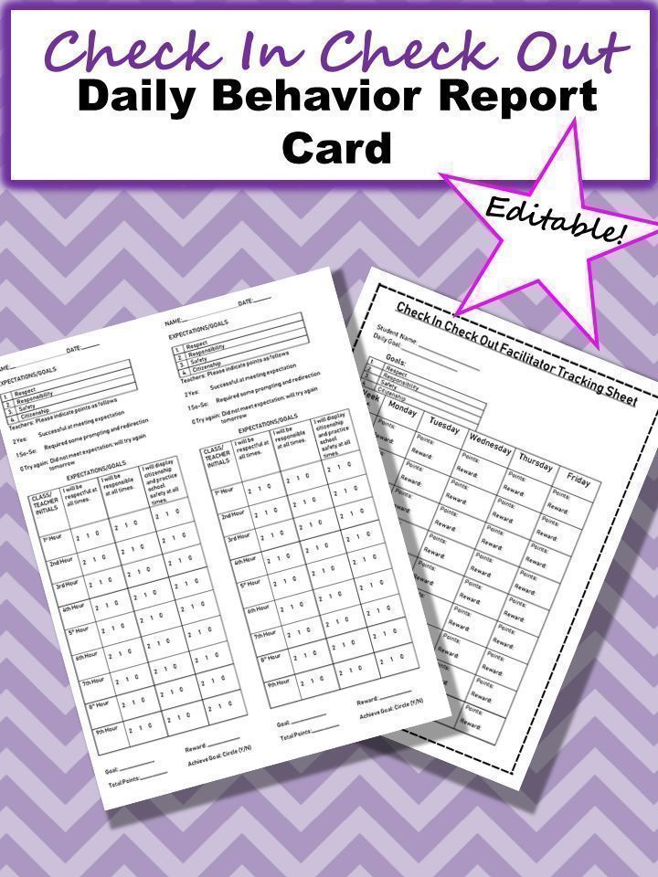 Check In Check Out Editable Daily Behavior Report Card Sample