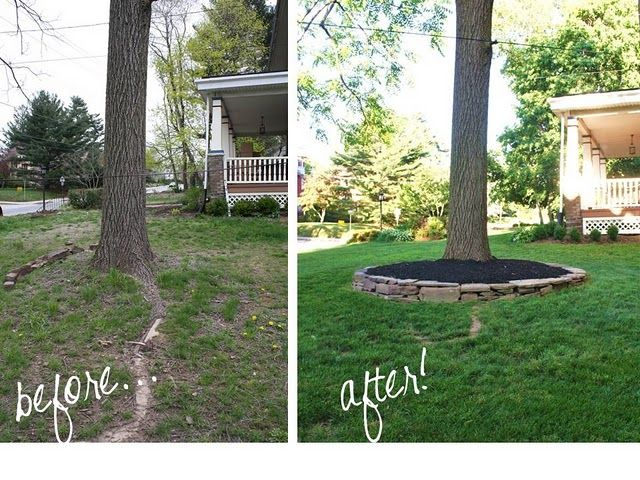 Don 39 t put mulch against tree trunk though stacked stone for Garden city trees