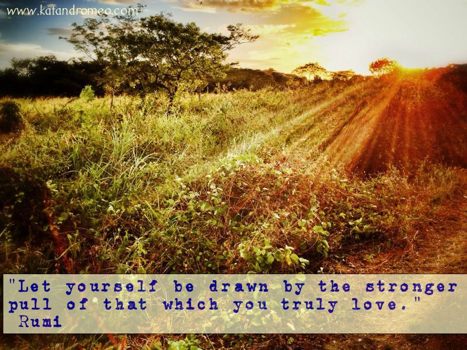 """""""Let yourself be drawn by the stronger pull of that which you truly love."""" Rumi  #rumi #rumiquote #inspiringquote #love #liveyourdreams #dowhatyoulove"""