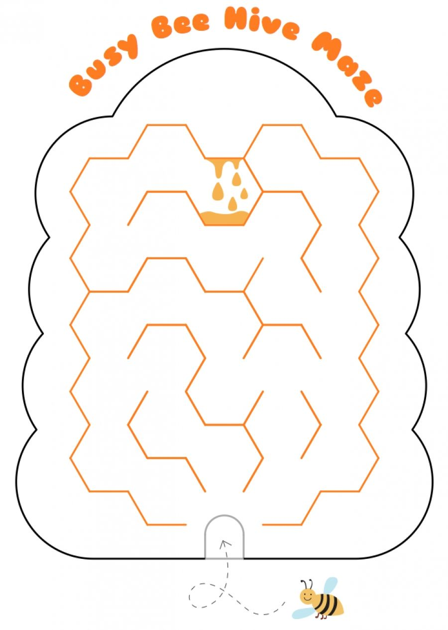 Busy Beehive Maze Maze Bee Hive Teaching Tools [ 1267 x 900 Pixel ]
