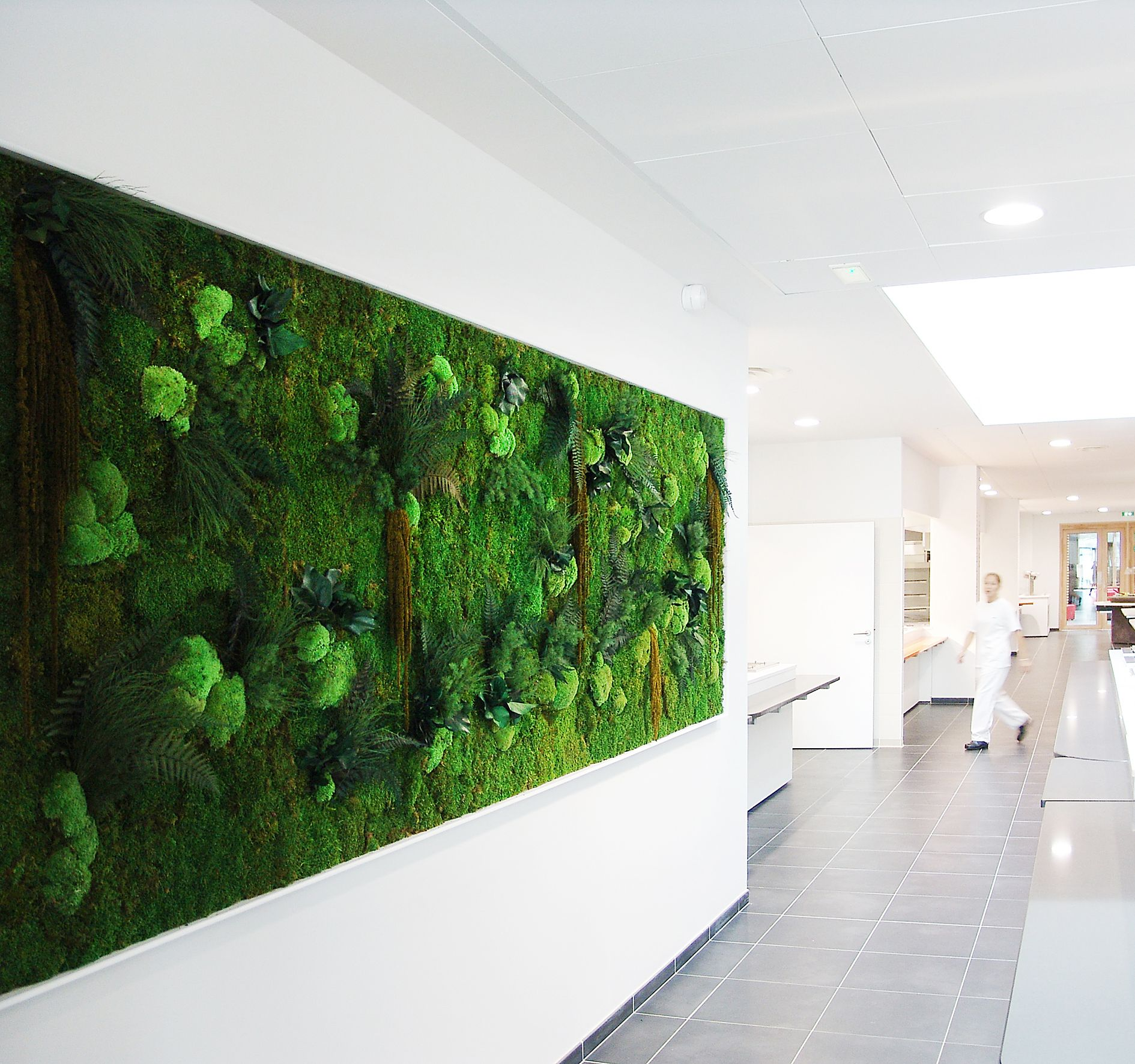 Murs & Tableaux Stabilis S  Adventive Adventive Wall Installationgreen