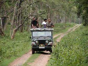 Jeep Ride Through Forest Wayanad Sightseeing Jungle Resort