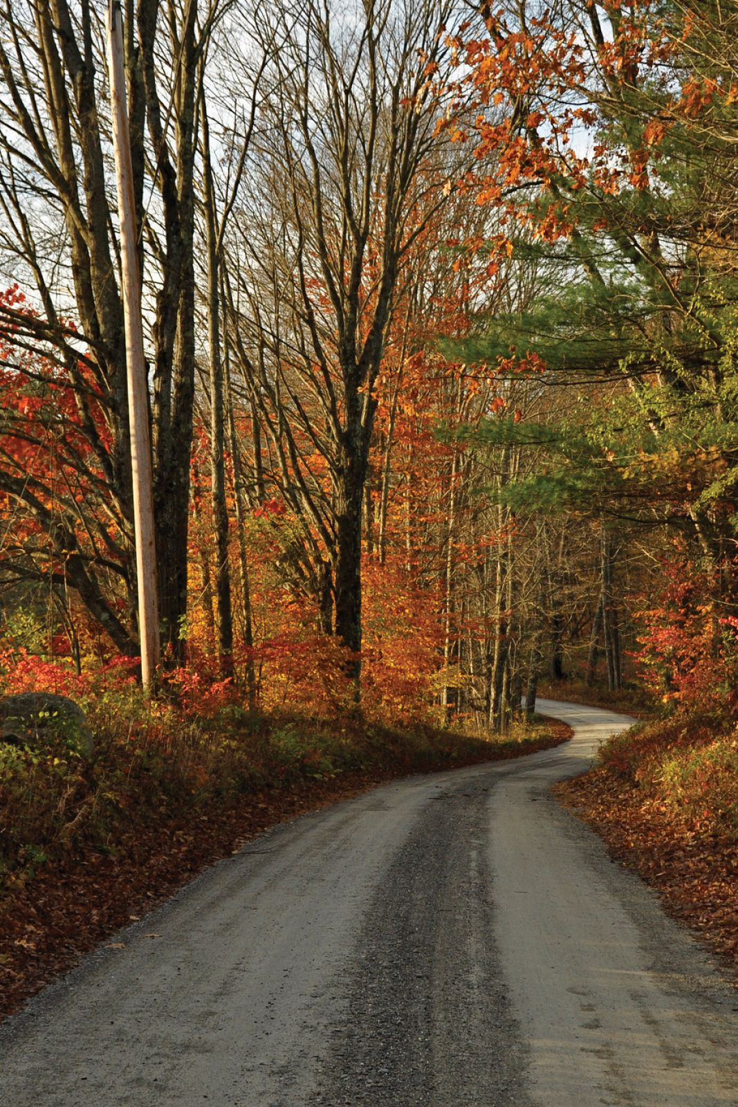 11 Country Roads In Vermont That Are Pure Bliss In