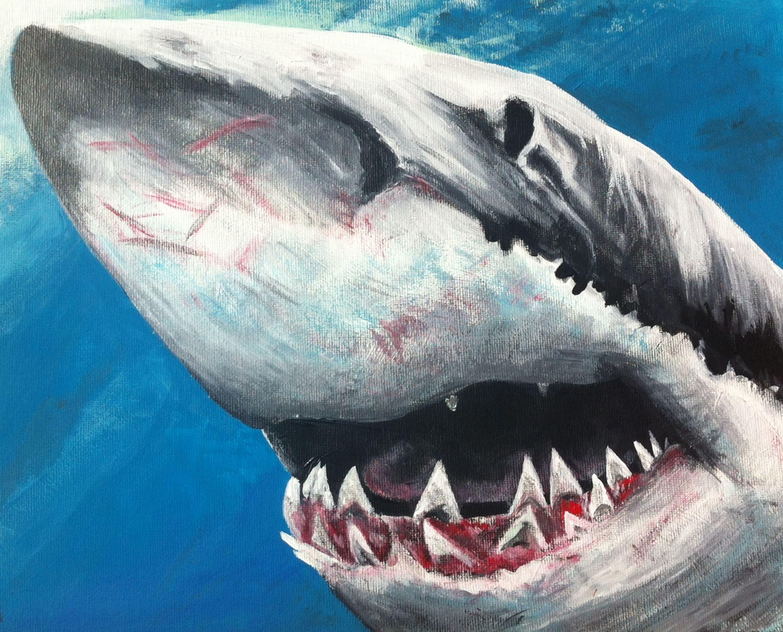 e10636791f49 Ahab s Shark