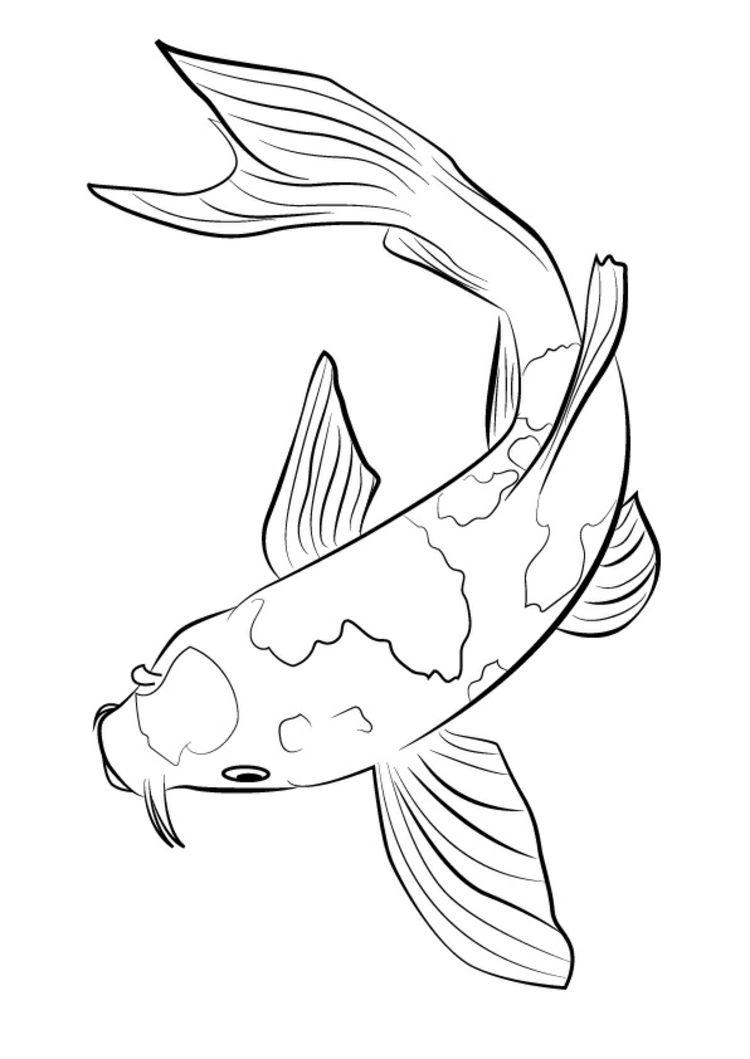 Ein Karpfen oder auch Koi als Grafik. | Grafik | Pinterest | Fische ...
