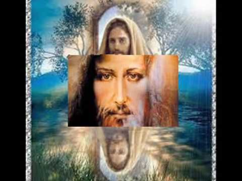 Gdy Szukasz Boga Popatrz Na Kwiaty Youtube Wiara Religia I Modlitwa