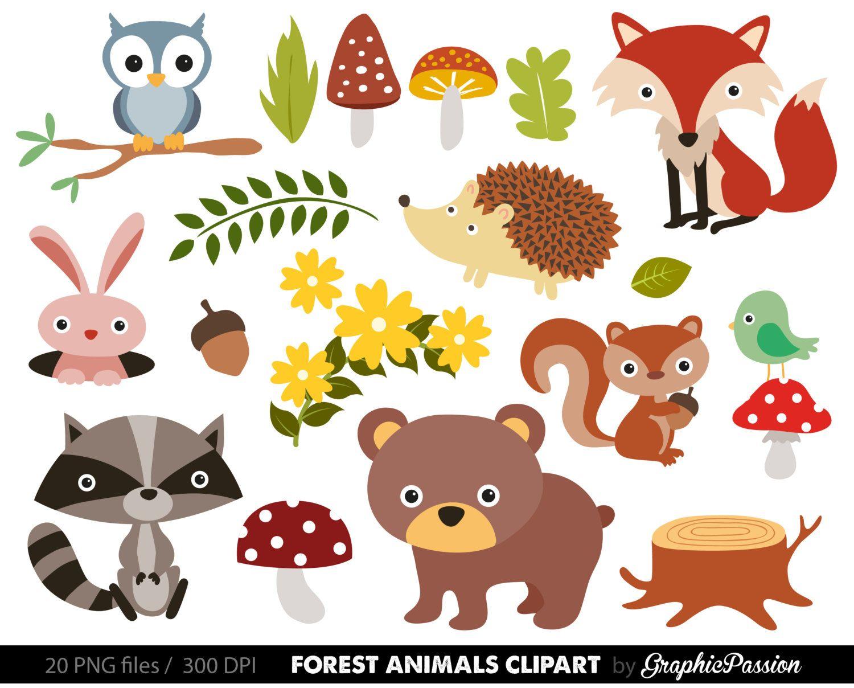 Free Woodland Animal Clipart For Kids Animal Clipart Animal Illustration Kids Animal Clipart Free