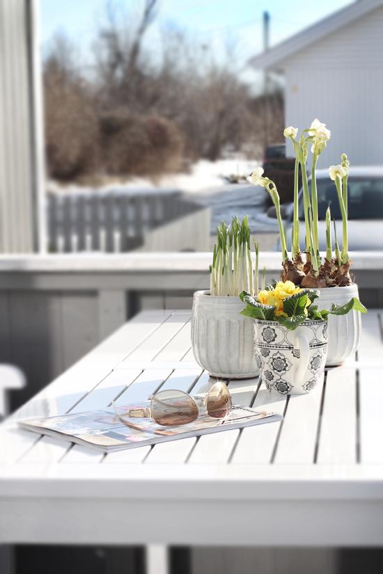 stylizimo blog  spring   flowers