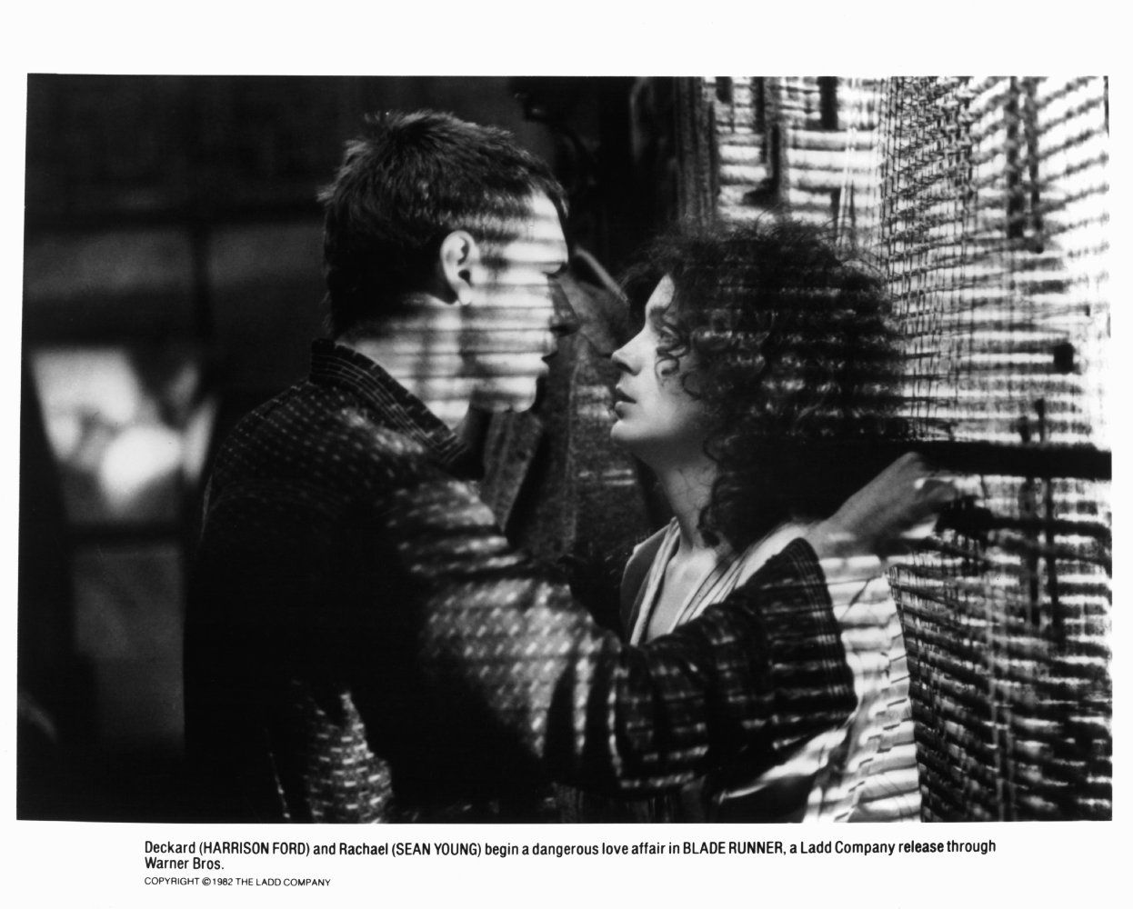 Harrison Ford and Sean Young in Blade Runner (1982 ... - photo#34