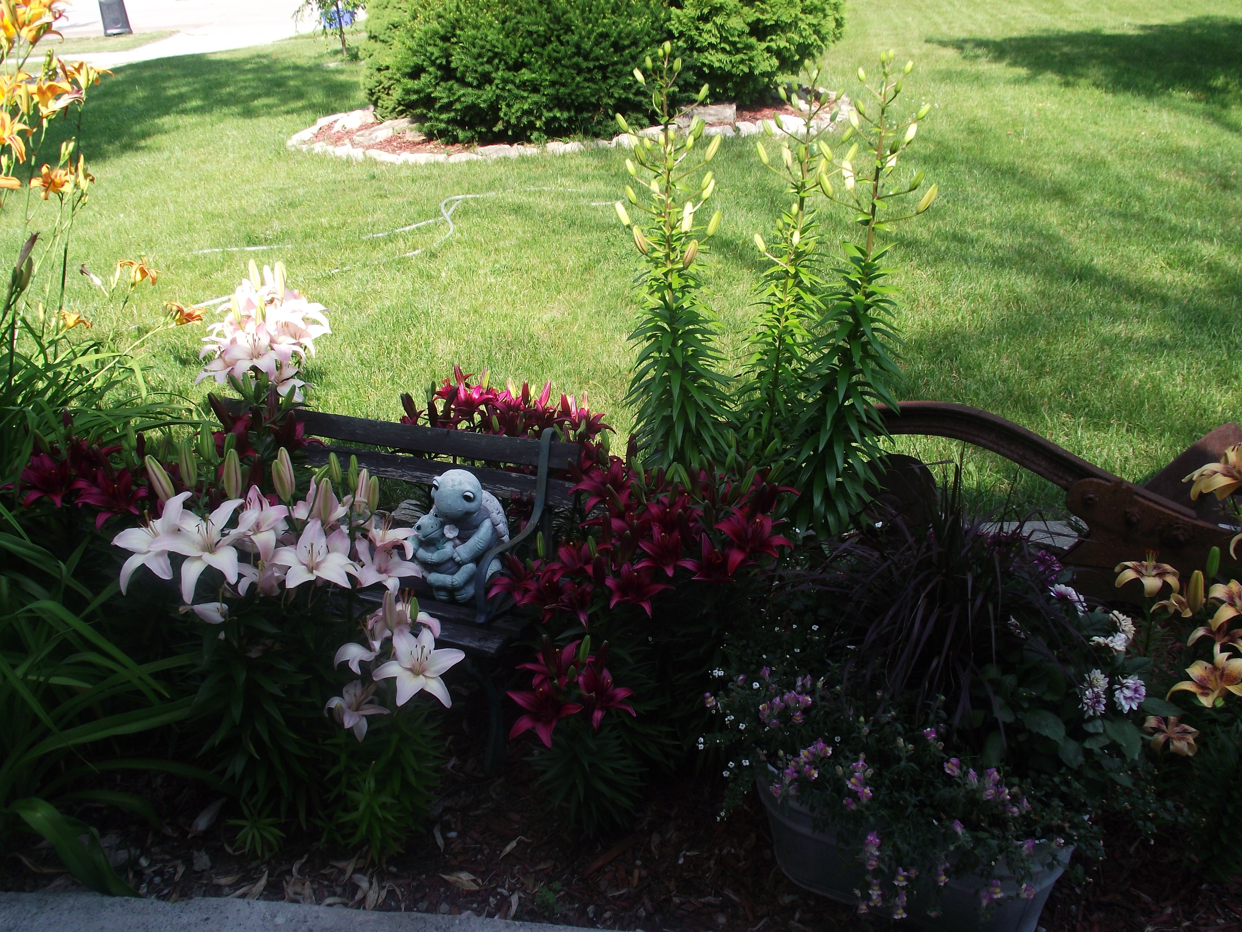 An old washtub as a planter and an old plow as garden decor ...