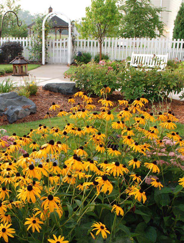 Sunrise Assisted Living Senior living, Sensory garden