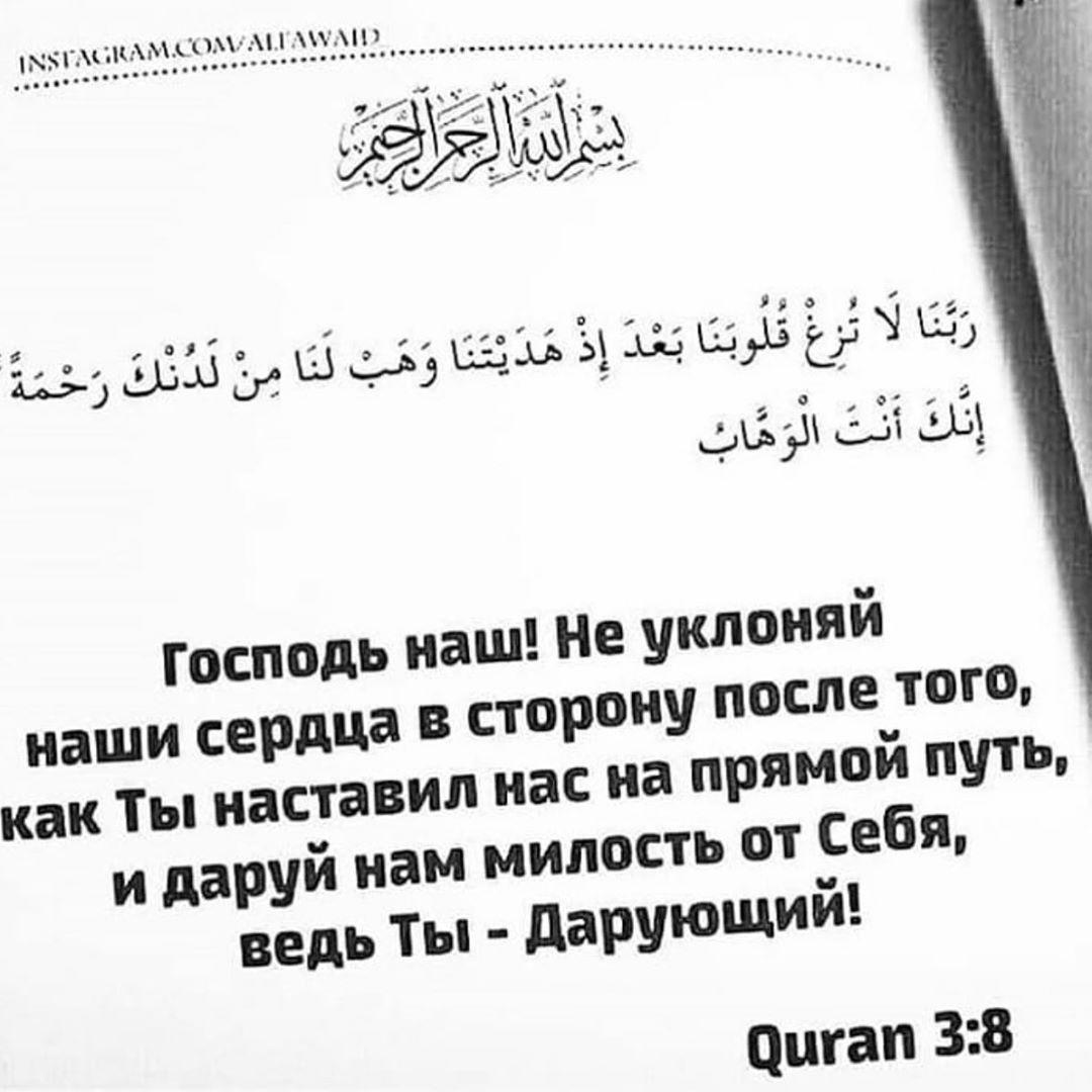Hayat Official Moskva S Instagram Profile Post Instagram Profile Math Quran