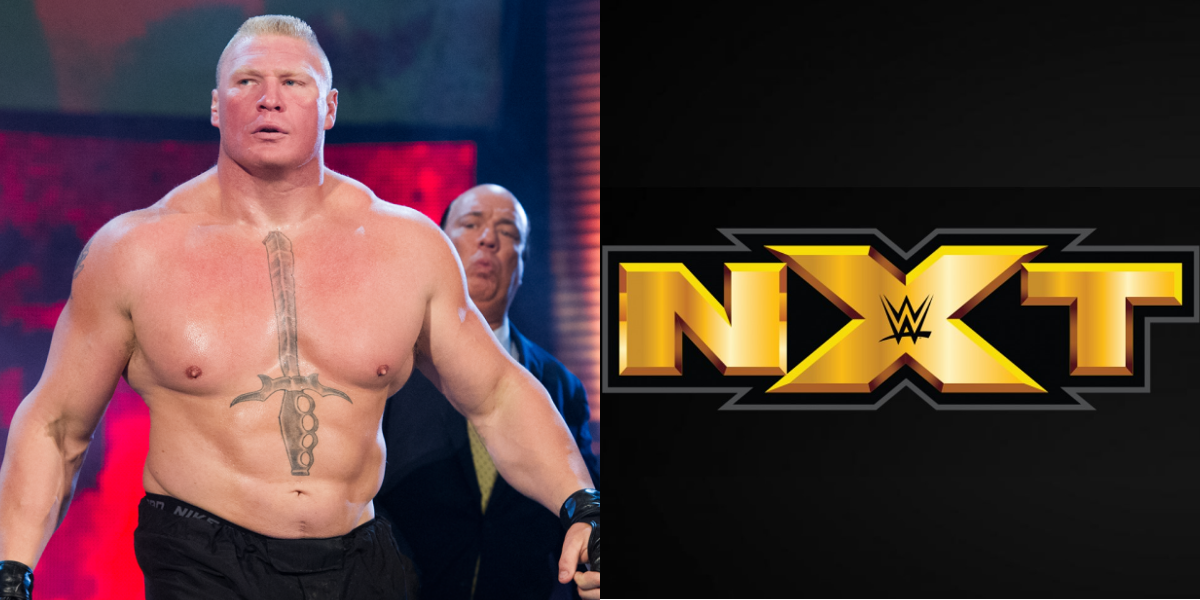 Wwe Rumors Roundup New Updates On Nxt Special Show Brock Lesnar S New Look And More Vince Mcmahon Brock Lesnar Wwe Latest
