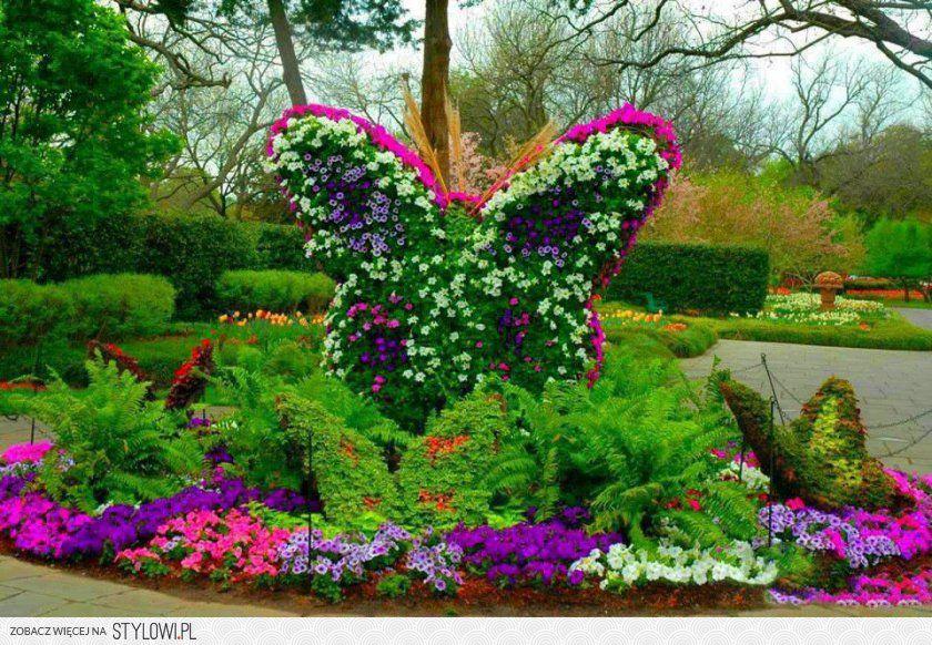 Najpiekniejsze Ogrody Galeria Szukaj W Google Flower Garden Backyard Flowers Beautiful Gardens