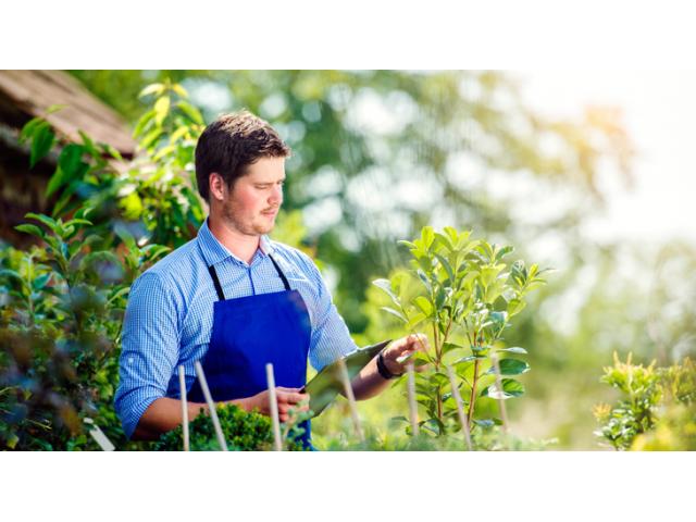 Jardinier outillé chez vous in 2020