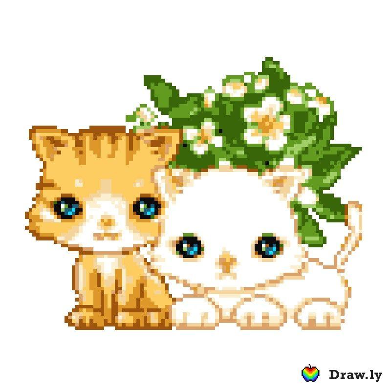 картинки анимация смайлики котята клумбы декоративные многолетники