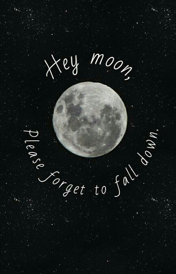 Hey Moon Please Forget To Fall Down Wallpaper Panic At The Disco Northern Downpour Phone Wallpapers