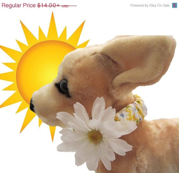 Sale 20 Off Daisy Chicgirl Dog By Bowwowwowboutique On Etsy